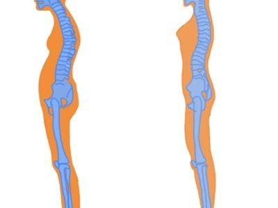 「疲れる・姿勢が悪い・冷えやすい」筋肉量が足りてない?それならプロテインを取り入れるべき